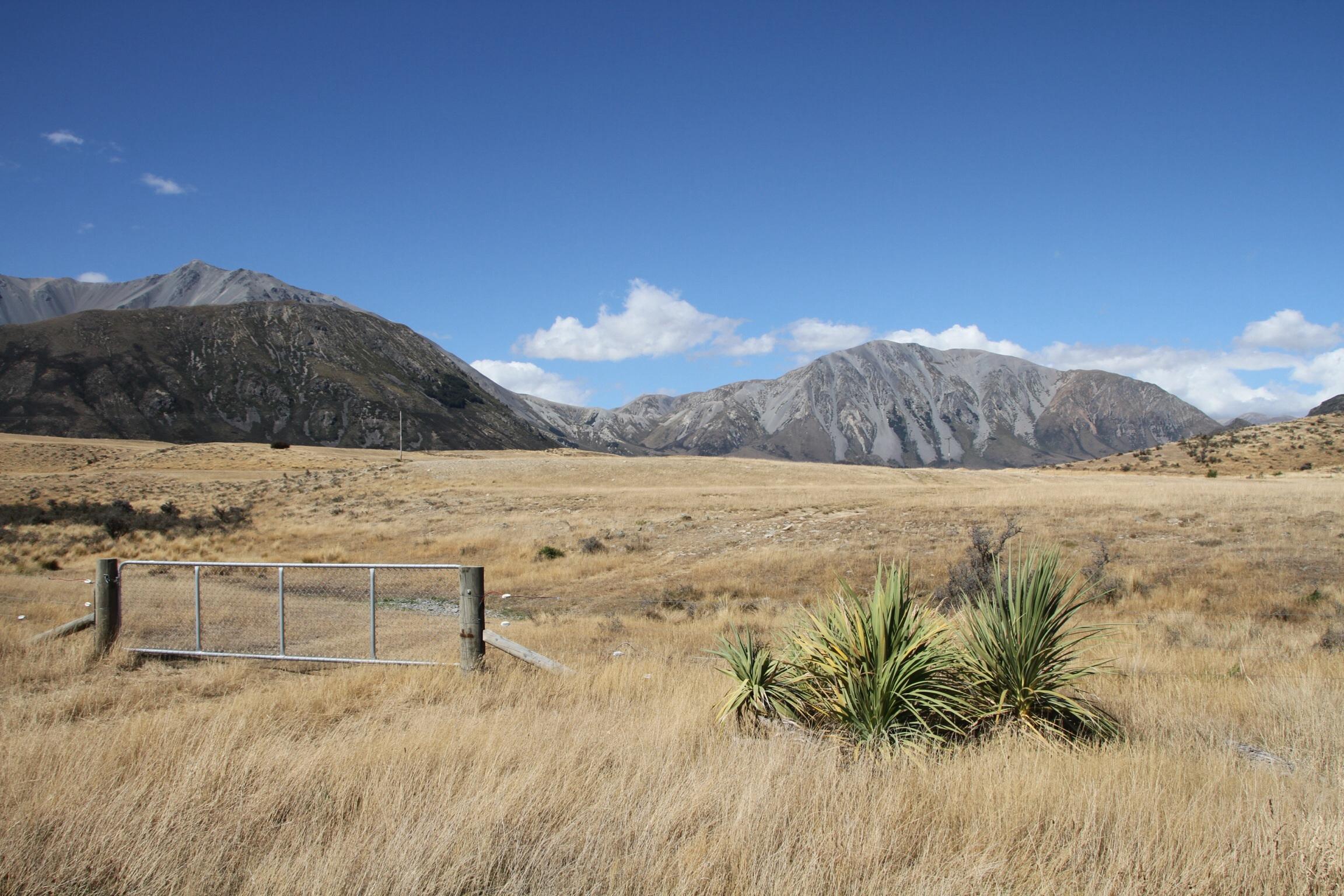 Zelt Mit Nach Neuseeland Nehmen : Eine nacht im farmhaus neuseeland wunderschönen